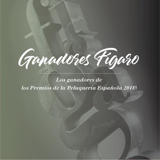 los ganadores de los Premios de la Peluquería Española 2018